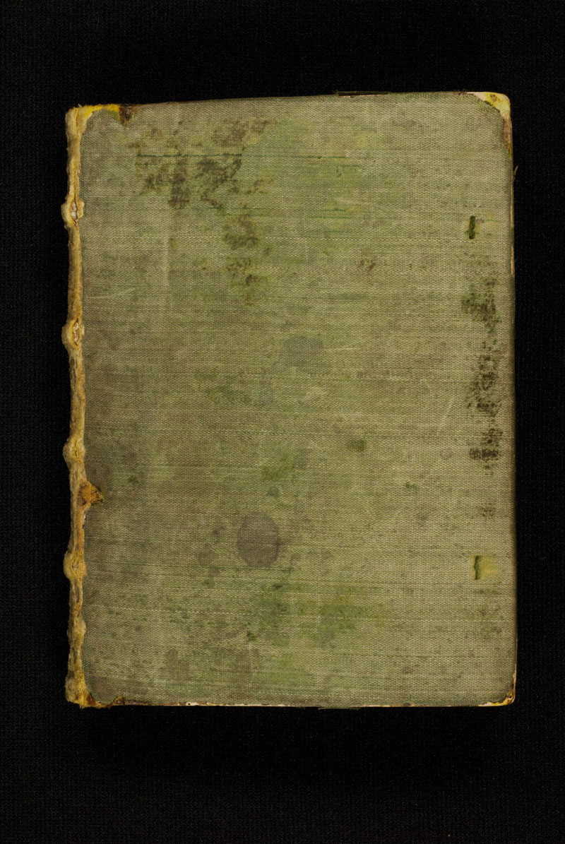 DuBourg Book of Hours (351236)