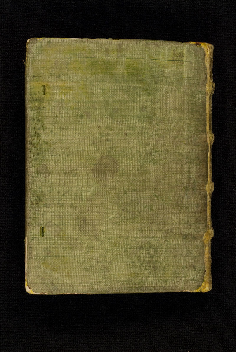 DuBourg Book of Hours (351237)