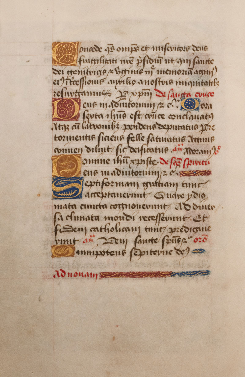 DuBourg Book of Hours (351247)