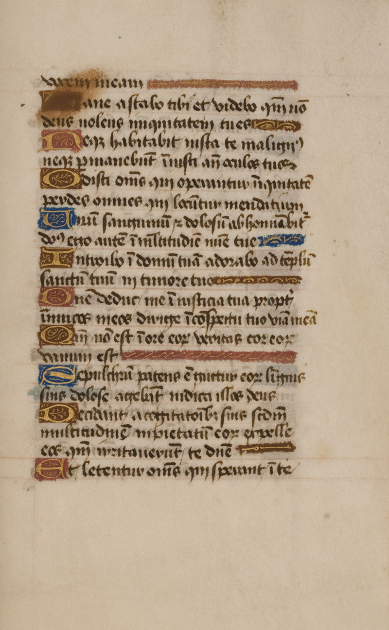 DuBourg Book of Hours (351250)