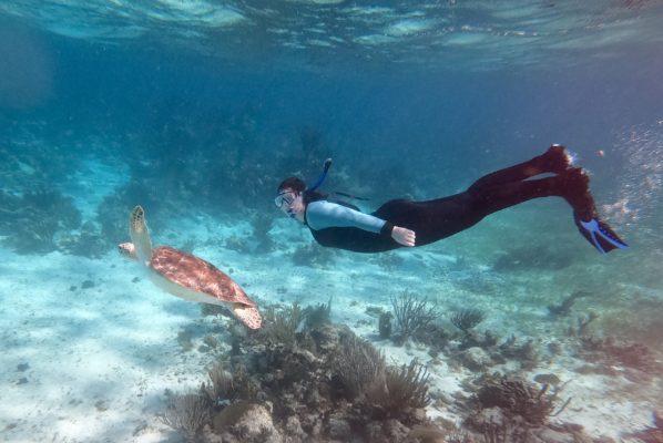 A photo of a woman swimming underwater in snorkel gear alongside a turtle
